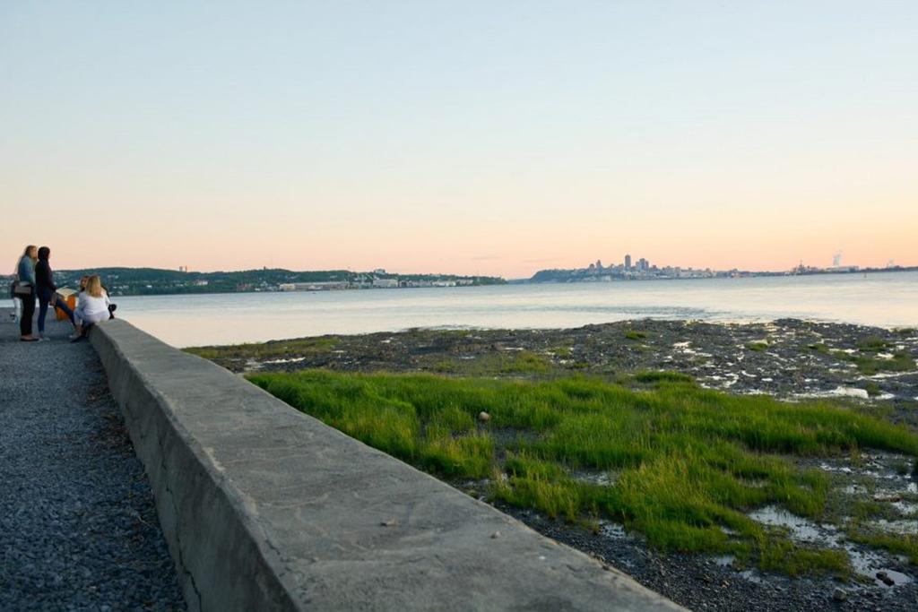 Vue du fleuve Saint-Laurent à marée basse et de la ville de Québec au loin à partir de la promenade Horatio-Walker.