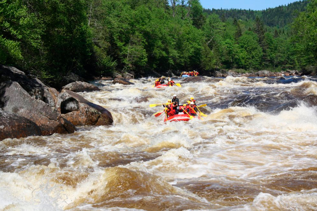 Plusieurs embarcations de rafting sur la rivière Jacques-Cartier mouvementée.