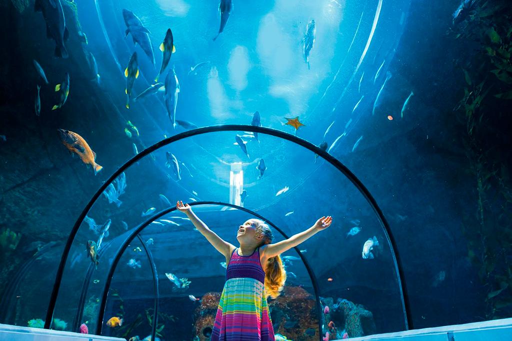 Jeune fille dans le tunnel du Grand Océan de l'Aquarium du Québec.