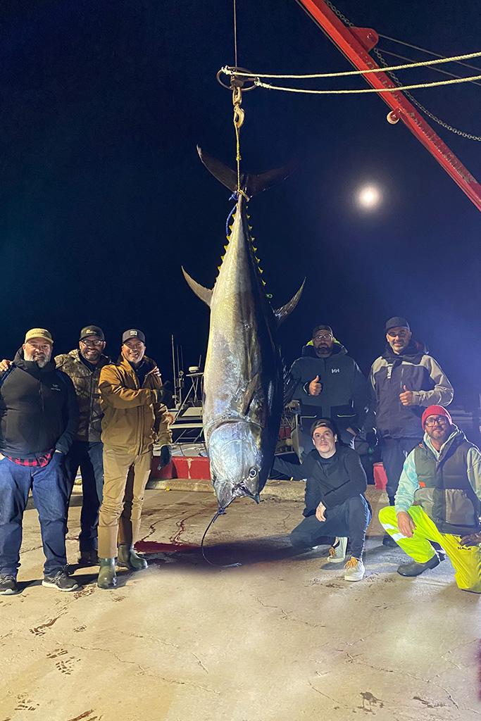 Le groupe de sept pêcheurs amateurs autour d'un thon rouge de 610 livres lors de sa pesée.